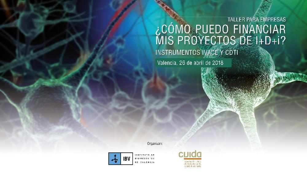 CVIDA Pantallazo Jornada CDTI 2018