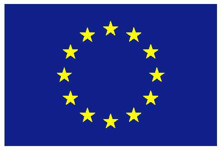 EuropeanFlag